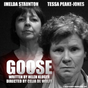 Goose (Dramatised) Audiobook By Helen Kluger cover art