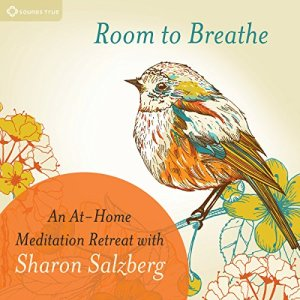 Room to Breathe Audiobook By Sharon Salzberg cover art