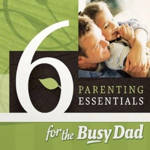 Six Parenting Essentials for the Busy Dad Audiobook By Chris Groff, Lee Long cover art