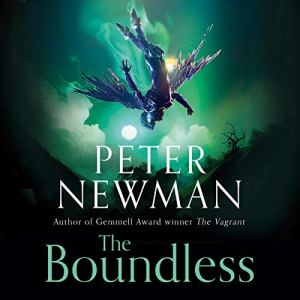The Boundless Audiobook By Peter Newman cover art