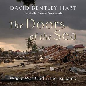 The Doors of the Sea: Where Was God in the Tsunami? Audiobook By David Bentley Hart cover art