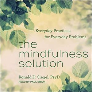 The Mindfulness Solution Audiobook By Ronald D. Siegel PsyD cover art