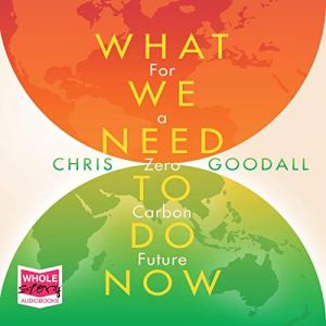 What We Need to Do Now Audiobook By Chris Goodall cover art