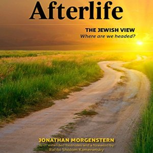 Afterlife Audiobook By Jonathan Morgenstern, Sholom Kamenetsky cover art