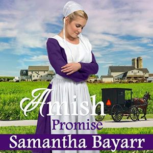 Amish Romance: The Promise Audiobook By Samantha Bayarr cover art