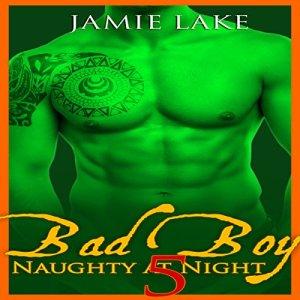 Bad Boy: Naughty at Night, Book 5 Audiobook By Jamie Lake cover art