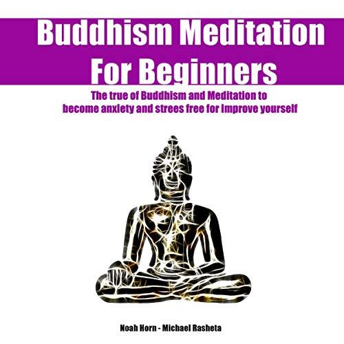 Buddhism Meditation for Beginners Audiobook By Noah Horn, Michael Rasheta cover art