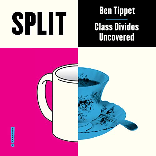 Split: Class Divides Uncovered Audiobook By Ben Tippet cover art
