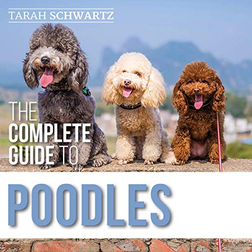 The Complete Guide to Poodles Audiobook By Tarah Schwartz cover art