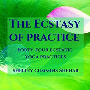 The Ecstasy of Practice Audiobook By Shelley Cummins Shehab cover art