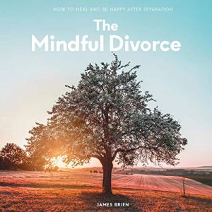 The Mindful Divorce Audiobook By James Brien cover art