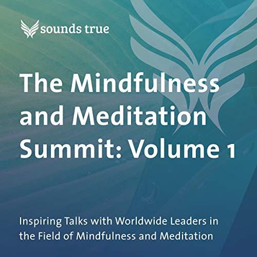 The Mindfulness and Meditation Summit: Volume 1 Audiobook By Jack Kornfield PhD, Alice Walker, Elisha Goldstein, Ruth King, Richard Davidson, Krishna Das cover art