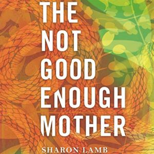 The Not Good Enough Mother Audiobook By Sharon Lamb cover art