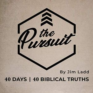 The Pursuit Audiobook By Jim Ladd cover art