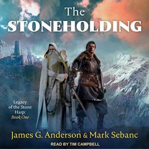 The Stoneholding Audiobook By James G. Anderson, Mark Sebanc cover art