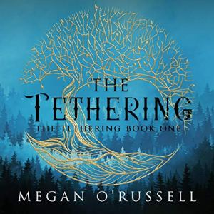 The Tethering Audiobook By Megan O'Russell cover art