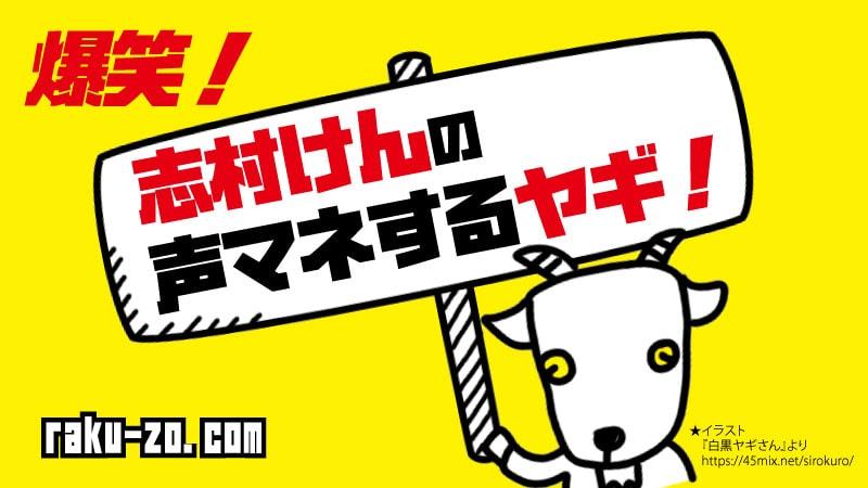 爆笑!志村けんの声マネするヤギ!のタイトル画像