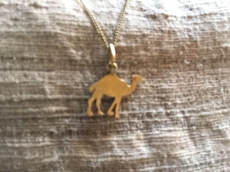 camel neckles
