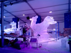 sculpture-glace-ottawa (5)