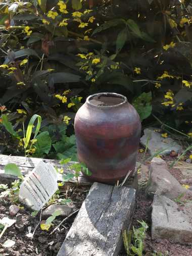 Raku Vase and Tiny Yellow Flowers