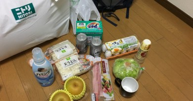 japan working holiday prepare