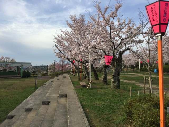 【高槻市】摂津峡さくら祭り2018 開催期間は3/31(土)~4/15(日)まで