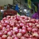 Pedagang bawang merah. Foto: Ilustrasi