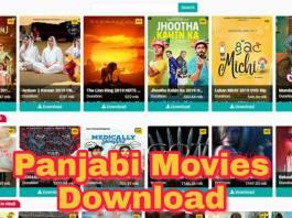 filmyhit hindi and panjabi movie download