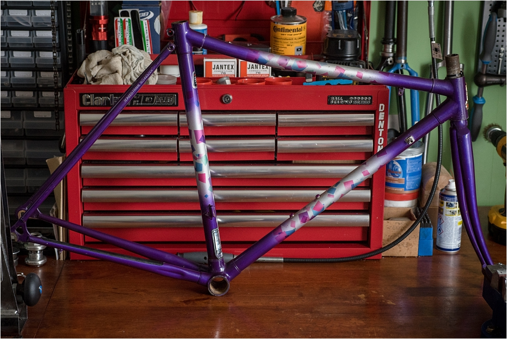 SB9529 Raleigh Special Products Division Dynatech Low Profile Frame