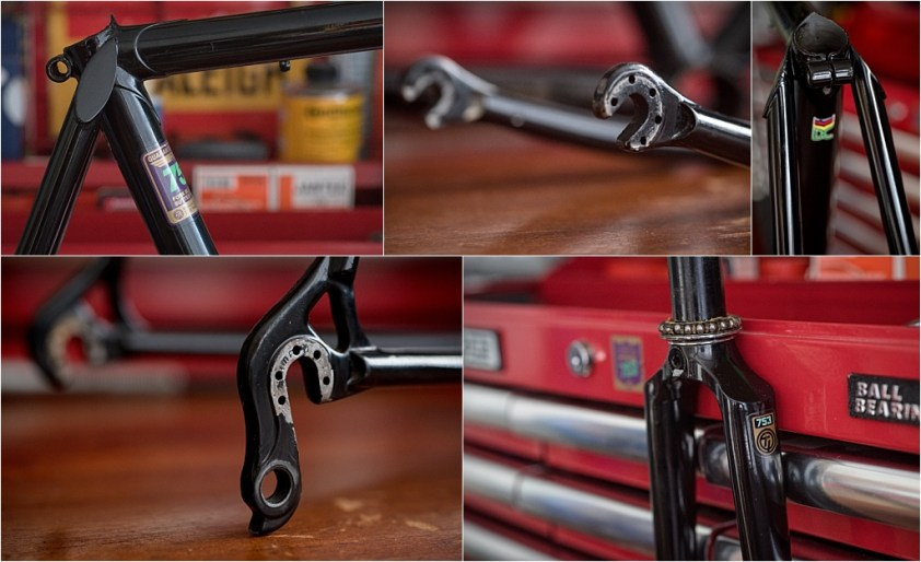 Raleigh SBDU Ilkeston TI-Reynolds 753 Campagnolo Super Record 50th Anniversary Frame Details