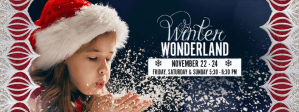 Winter Wonderland @ Park West Village | Morrisville | North Carolina | United States