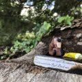 A sculpture from Graymon Ward's Tiny Art Scavenger Hunt at Fred Fletcher Park