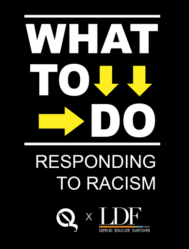 """""""What to Do: Replying to Racism"""" Flyer"""
