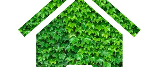 Buyers Still Prefer Green Home Features, and Will Pay More Up Front to Save