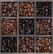 Coffee beans light to dark roast