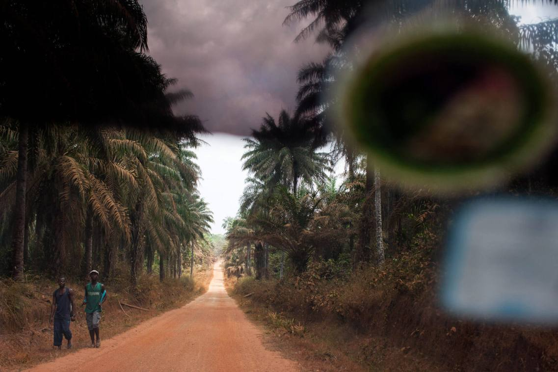 Jungle Road, Sierra Leone.