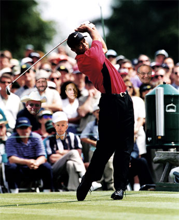 Tiger Woods and other professionals