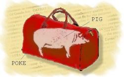 pig in a poke aka bag