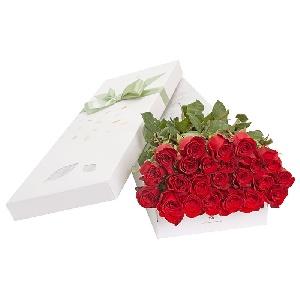 Trandafirul rosu, simbol al dragostei