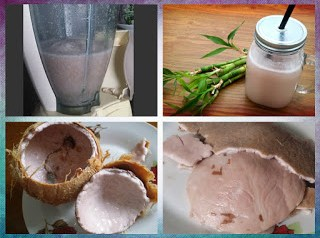 Mod de obtinere a laptelui de cocos