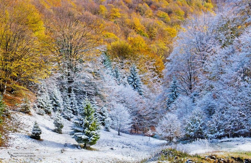 A Winter's Tale - Queen, in fotografiile lui Mircea Costina