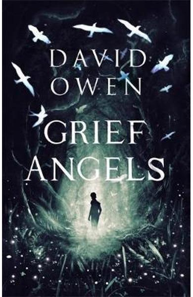 Grief Angels - David Owen