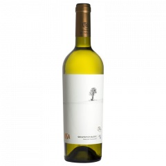 Vin alb - Issa La Salina, Sauvignon Blanc. 2014, sec