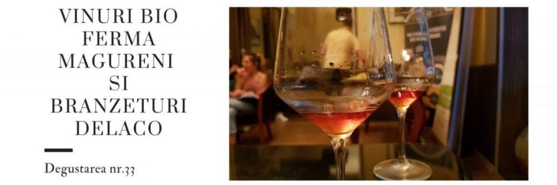 Pinot Gris - Ferma Magureni