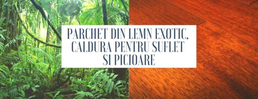 Parchet din lemn exotic, caldura pentru suflet si picioare