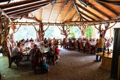 ASociatia Bloggerilor Olteni In padurea la Coveanu