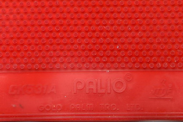 Palio_CK531A