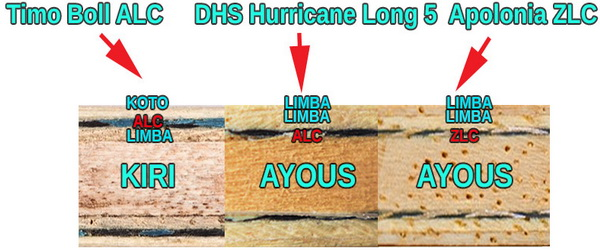 DHS-HL5_5