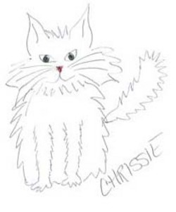 badly drawn cat