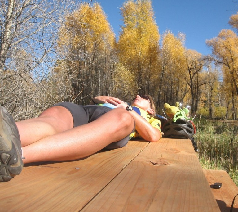 trail ridge road picnic table
